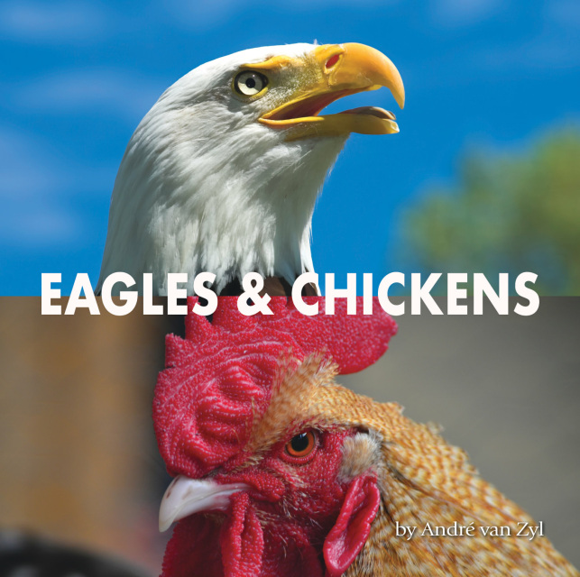 Eagles and Chickens by Andre van Zyl